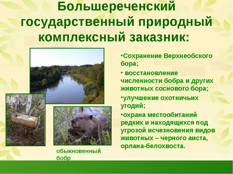 Большереченский государственный природный комплексный заказник: Сохранение Ве...