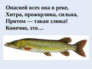 Опасней всех она в реке, Хитра, прожорлива, сильна, Притом — такая злюка! Кон