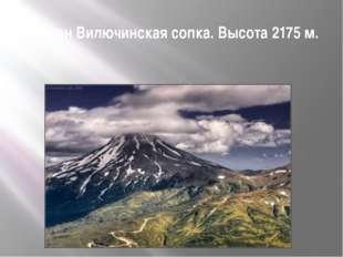 Вулкан Вилючинская сопка. Высота 2175м.