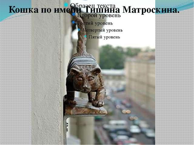 Кошка по имени Тишина Матроскина. В доме № 36 на улице Марата появилась новая...