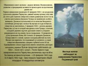 Образование нового вулкана – редкое явление. Возникновение, развитие и прекра