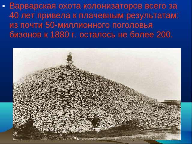 Варварская охота колонизаторов всего за 40 лет привела к плачевным результата...