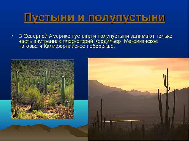 Пустыни и полупустыни В Северной Америке пустыни и полупустыни занимают тольк...