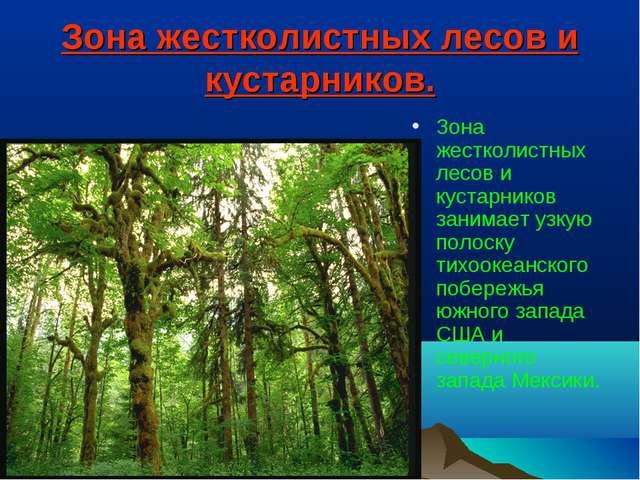 Зона жестколистных лесов и кустарников. Зона жестколистных лесов и кустарнико...