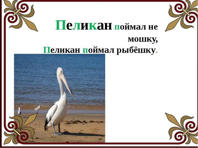 Пара птиц порхала, порхала – да не выпорхнула.