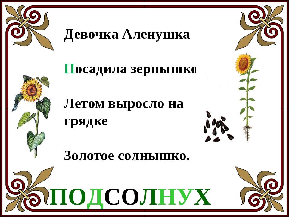 Домовитая хозяйка Полетает над лужайкой, Похлопочет над цветком – Он поделитс...