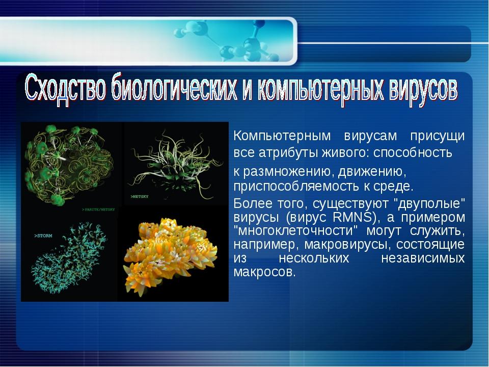 Компьютерным вирусам присущи все атрибуты живого: способность к размножению...