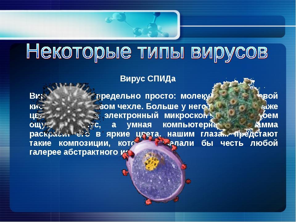 Вирус устроен предельно просто: молекула нуклеиновой кислоты в белковом чехл...