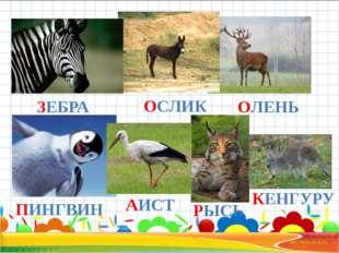 ЗЕБРА ОСЛИК ОЛЕНЬ ПИНГВИН АИСТ РЫСЬ КЕНГУРУ
