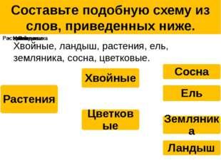 Составьте подобную схему из слов, приведенных ниже. Хвойные, ландыш, растения