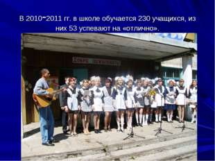 В 2010-2011 гг. в школе обучается 230 учащихся, из них 53 успевают на «отличн