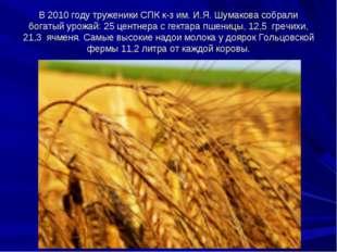 В 2010 году труженики СПК к-з им. И.Я. Шумакова собрали богатый урожай: 25 це