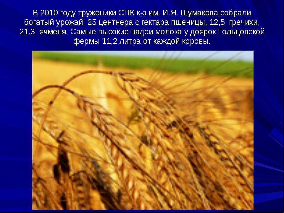 В 2010 году труженики СПК к-з им. И.Я. Шумакова собрали богатый урожай: 25 це...