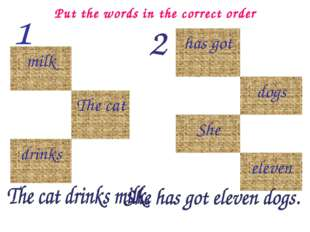 Put the words in the correct order milk The cat drinks has got dogs She