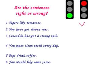 Are the sentences right or wrong? 1 Tigers like tomatoes.		 2 You have got el