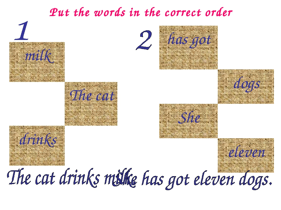 Put the words in the correct order milk The cat drinks has got dogs She...