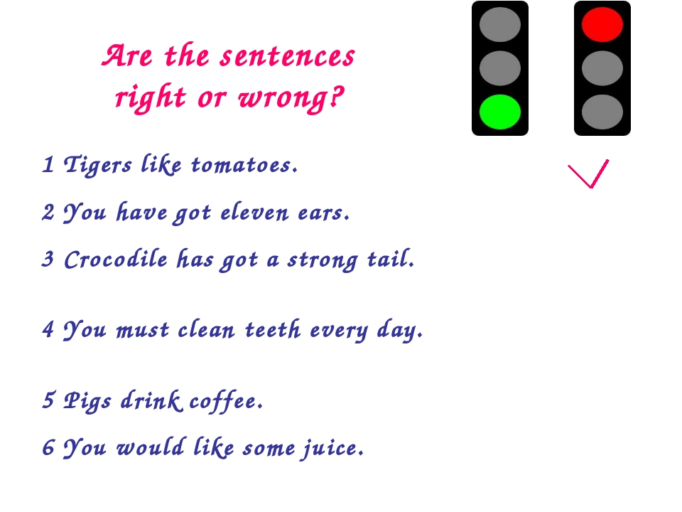 Are the sentences right or wrong? 1 Tigers like tomatoes. 2 You have got el...