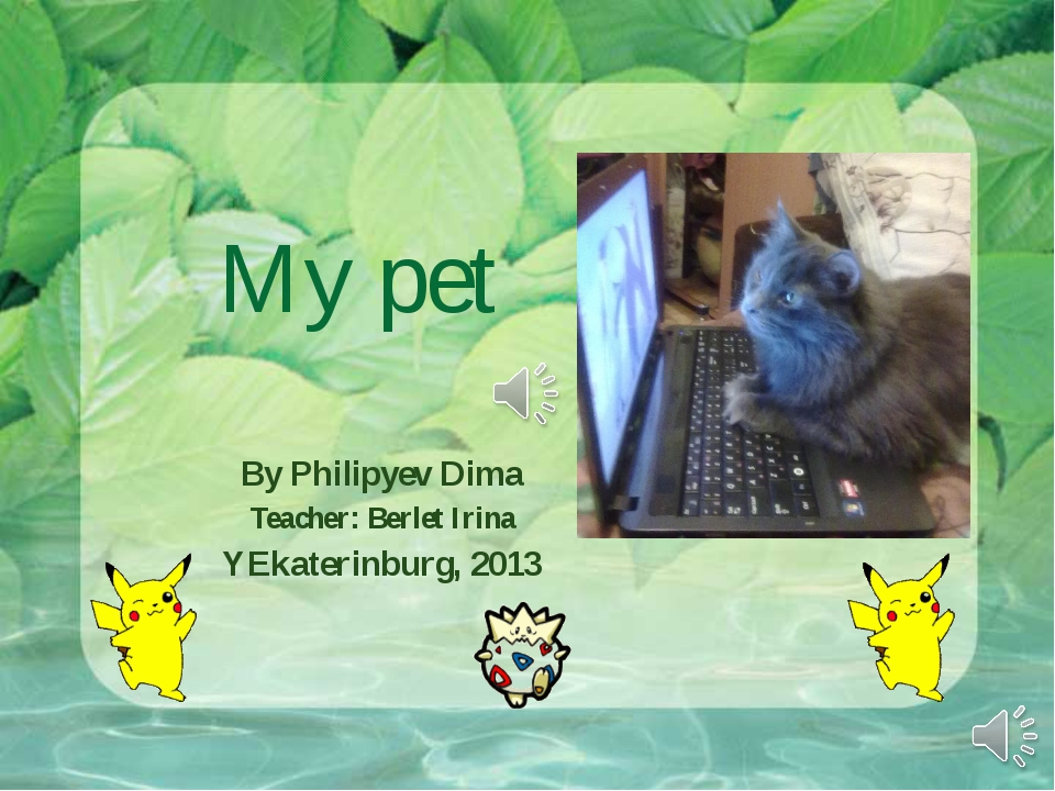My pet By Philipyev Dima Teacher: Berlet Irina YEkaterinburg, 2013