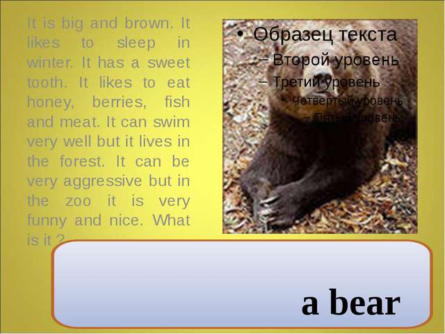 It is big and brown. It likes to sleep in winter. It has a sweet tooth. It l...