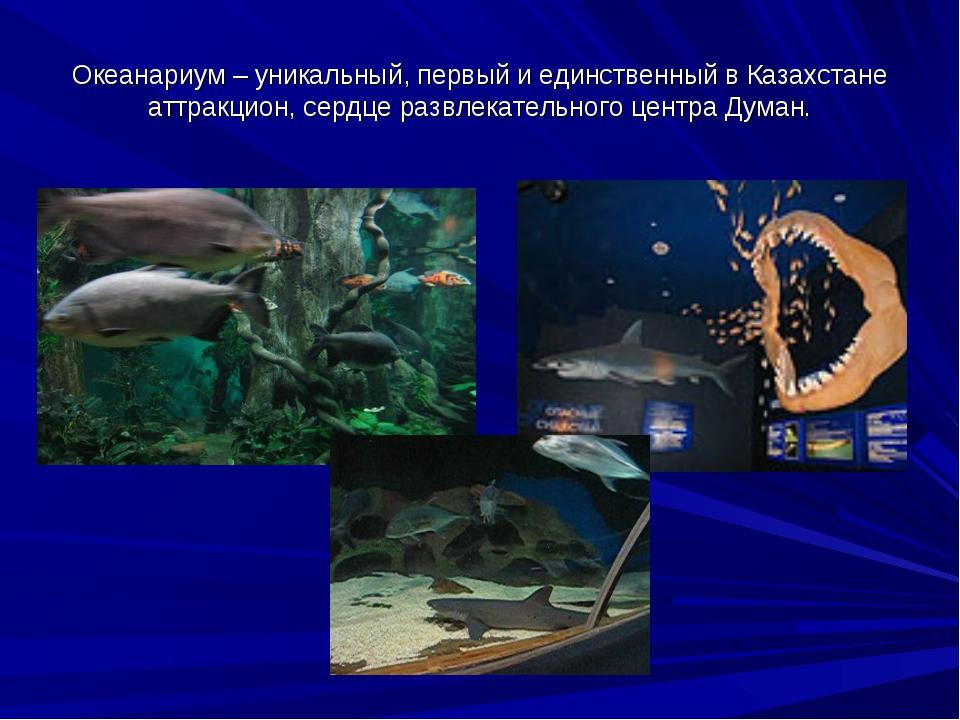 Океанариум – уникальный, первый и единственный в Казахстане аттракцион, сердц...