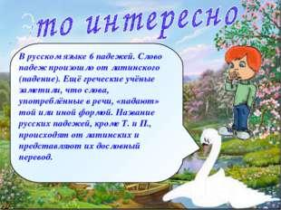 В русском языке 6 падежей. Слово падеж произошло от латинского (падение). Ещё