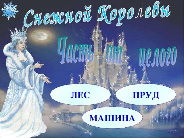 ЛЕС ПРУД МАШИНА