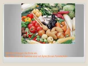 Die Bauer bringen die Ernte ein. Das Obst und das Gemüse sind reif:Äpfel,Birn