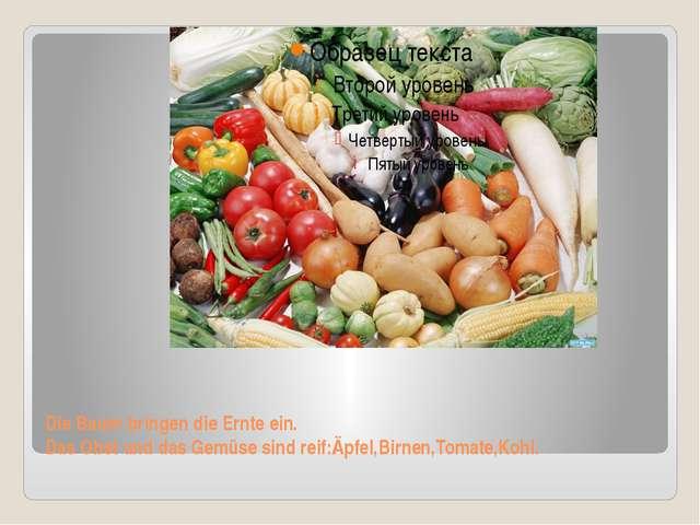 Die Bauer bringen die Ernte ein. Das Obst und das Gemüse sind reif:Äpfel,Birn...