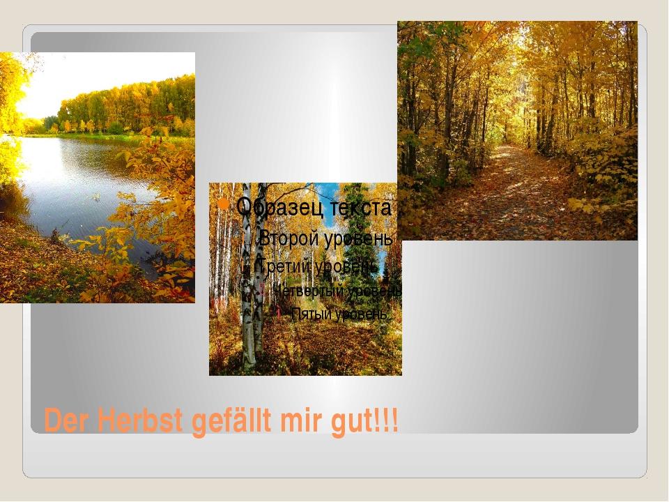 Der Herbst gefällt mir gut!!!