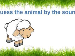 Guess the animal by the sound A sheep
