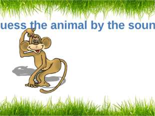 Guess the animal by the sound A monkey