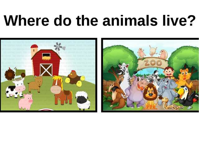 Where do the animals live? on a farm in the zoo