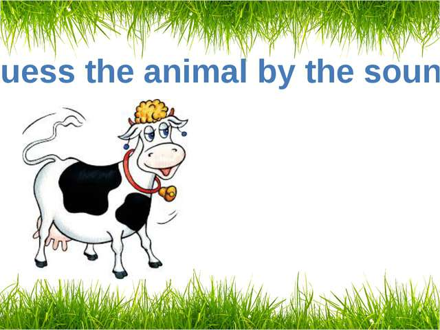Guess the animal by the sound A cow