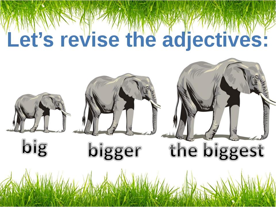 Let's revise the adjectives: