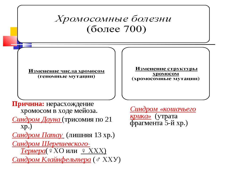 Хромосомные болезни (более 700) а) изменение числа хромосом (геномные мутаци...