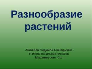 Разнообразие растений Аникеева Людмила Геннадьевна Учитель начальных классов