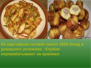 Из картофеля готовят около 1000 блюд в домашних условиях . Клубни перерабаты