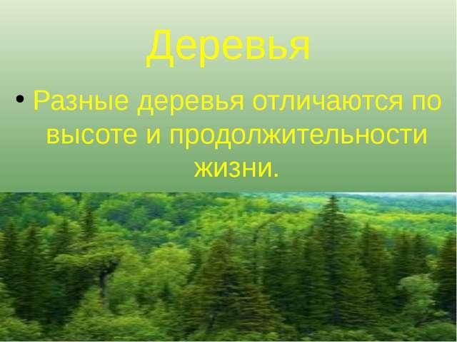 Деревья Разные деревья отличаются по высоте и продолжительности жизни.