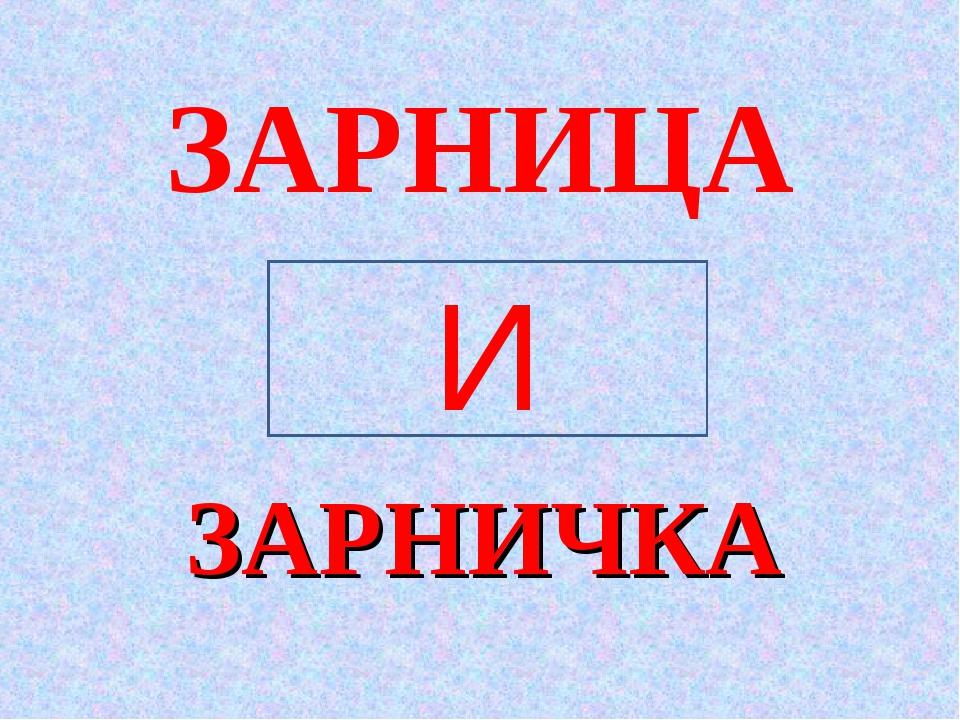 ЗАРНИЧКА ЗАРНИЦА И