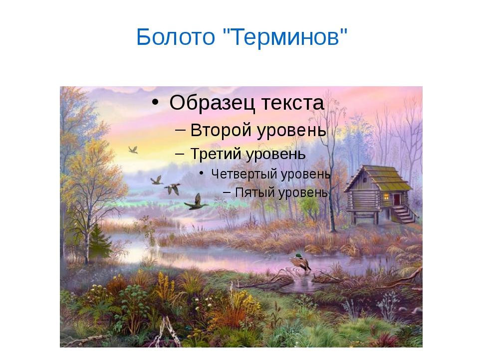 """Болото """"Терминов"""""""