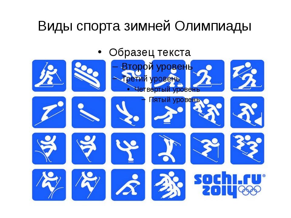 Виды спорта зимней Олимпиады