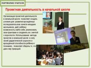 Проектная деятельность в начальной школе Организация проектной деятельности в