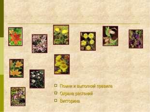 Помни и выполняй правила Охрана растений Викторина