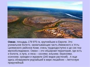 Океан, площадь 178 975 га, крупнейшее в Европе. Это уникальное болото, захват