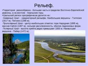 Рельеф. Территория разнообразна - большая часть в пределах Восточно-Европейск