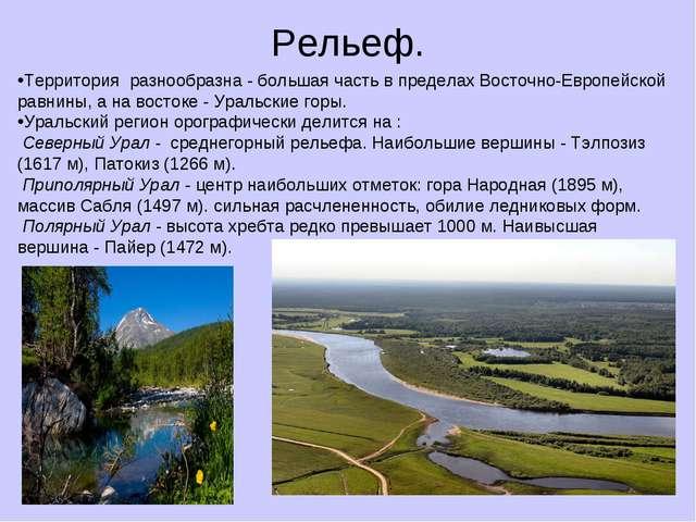 Рельеф. Территория разнообразна - большая часть в пределах Восточно-Европейск...