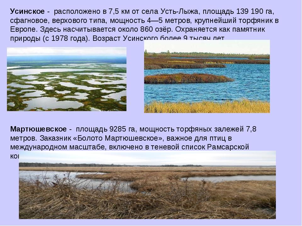 Усинское - расположено в 7,5 км от села Усть-Лыжа, площадь 139 190 га, сфагно...