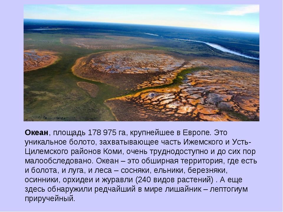 Океан, площадь 178 975 га, крупнейшее в Европе. Это уникальное болото, захват...