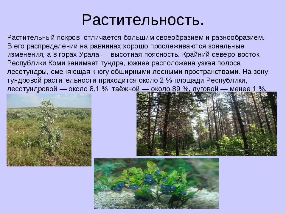Растительность. Растительный покров отличается большим своеобразием и разнооб...