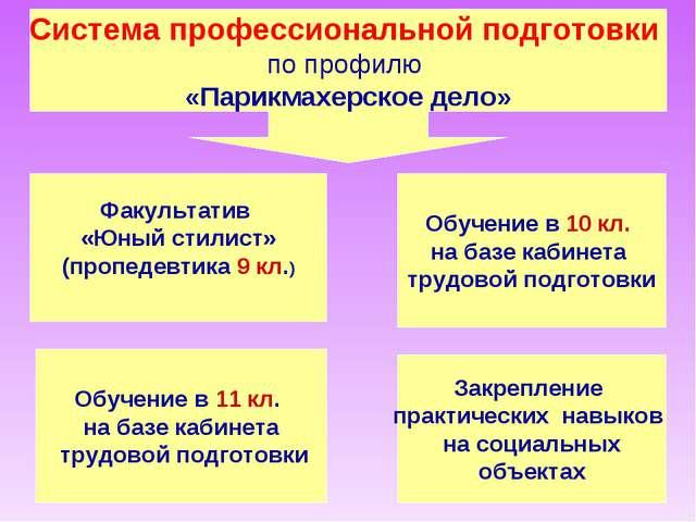 Система профессиональной подготовки по профилю «Парикмахерское дело» Факульта...